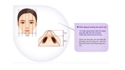 Thu gọn đầu mũi nội soi 1