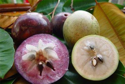 Những loại quả ngon nên ăn sau khi sinh mổ 2